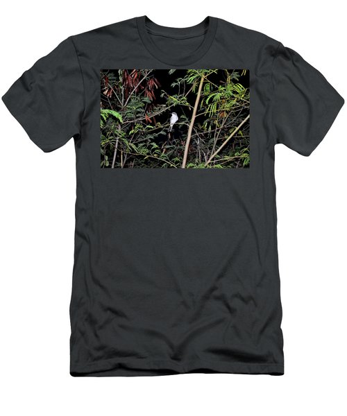 Kingbird At Night Men's T-Shirt (Athletic Fit)