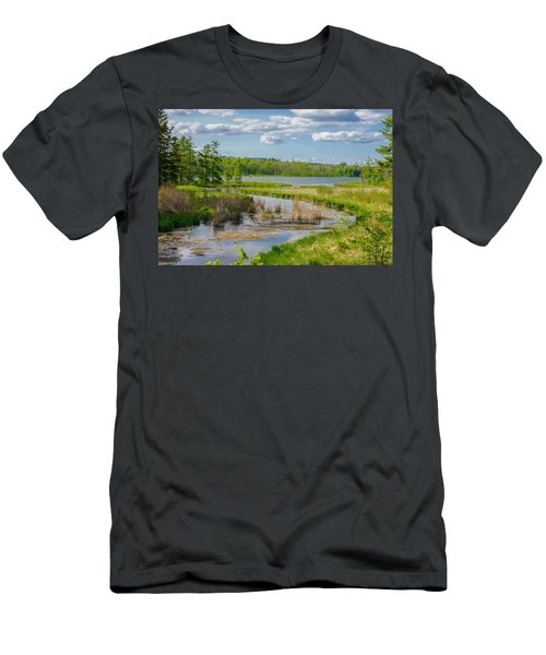 Lake Itasca Beauty Men's T-Shirt (Athletic Fit)