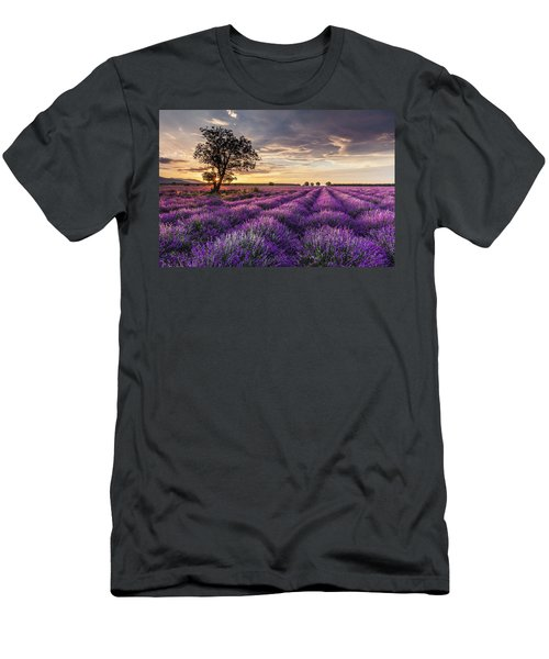 Lavender Sunrise Men's T-Shirt (Athletic Fit)