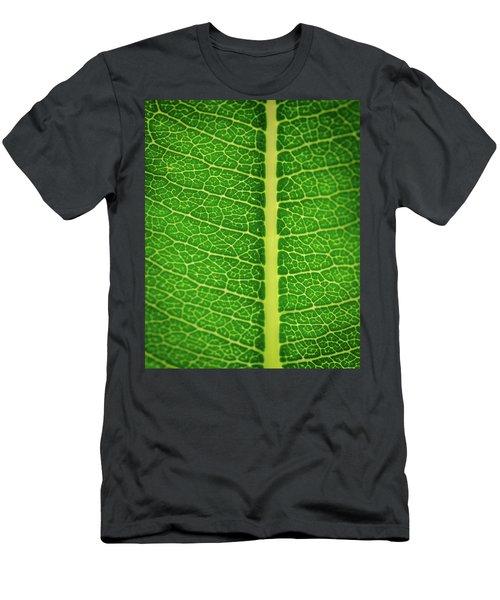 Leafy Detail Men's T-Shirt (Athletic Fit)
