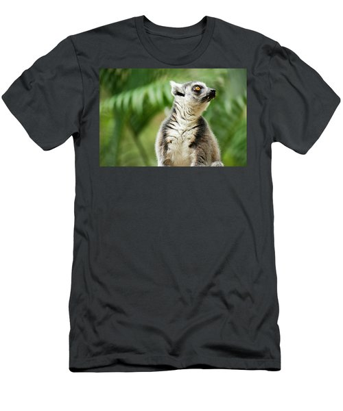 Men's T-Shirt (Athletic Fit) featuring the photograph Lemur By Itself Amongst Nature. by Rob D Imagery