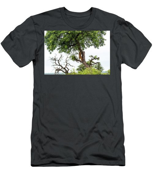 Leopard Descending A Tree Men's T-Shirt (Athletic Fit)