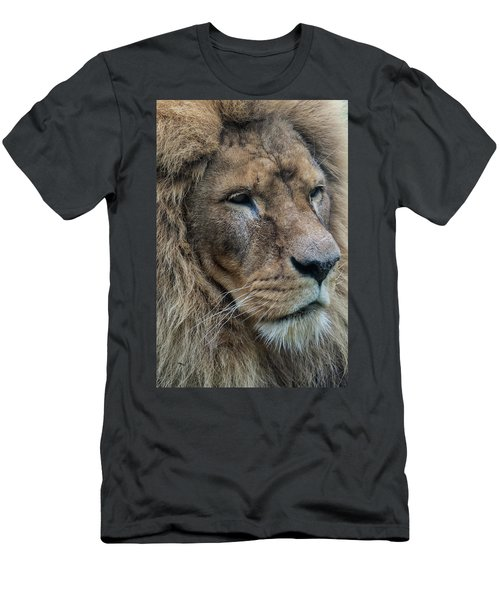 Men's T-Shirt (Athletic Fit) featuring the photograph Lion by Anjo Ten Kate