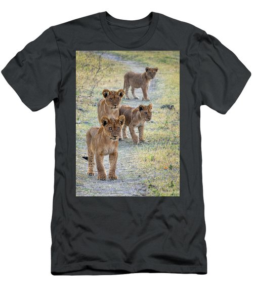 Men's T-Shirt (Athletic Fit) featuring the photograph Lion Cubs On The Trail by John Rodrigues