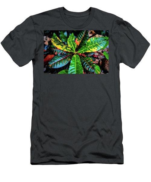 Liquid Tropical Colors Men's T-Shirt (Athletic Fit)
