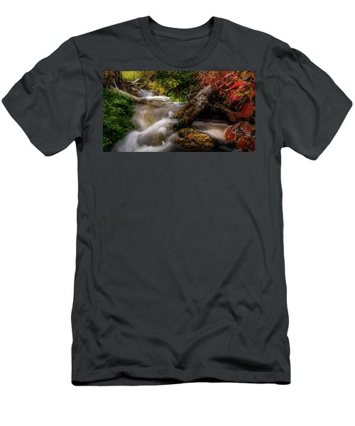 Little Deer Creek Autumn Men's T-Shirt (Athletic Fit)