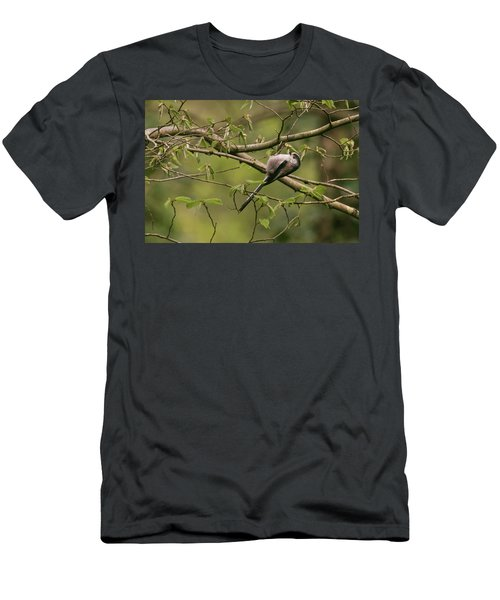 Long Tailed Tit Men's T-Shirt (Athletic Fit)