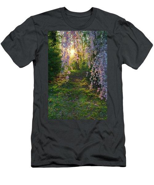Magnolia Tree Sunset Men's T-Shirt (Athletic Fit)