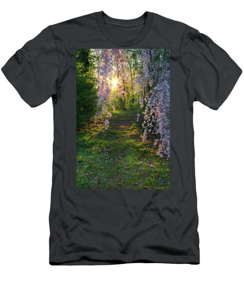 Magnolia Tree Sunset Men's T-Shirt (Athletic Fit)