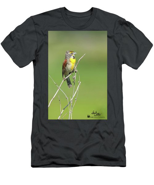 Male Dickcissel Men's T-Shirt (Athletic Fit)