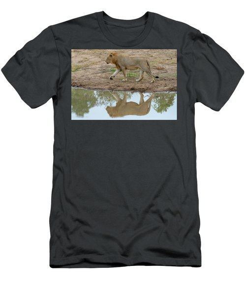 Male Lion And His Reflection Men's T-Shirt (Athletic Fit)