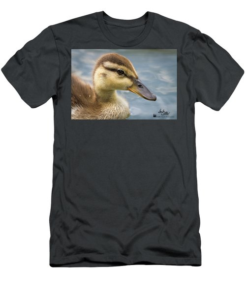 Mallard Duckling Men's T-Shirt (Athletic Fit)