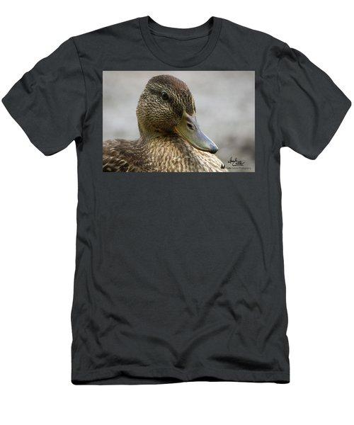 Mallard Hen Men's T-Shirt (Athletic Fit)