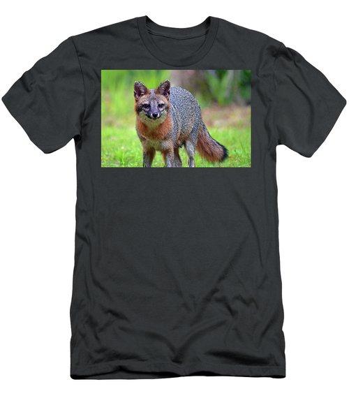 Mama Fox Men's T-Shirt (Athletic Fit)