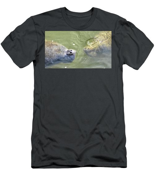 Manatee Love Men's T-Shirt (Athletic Fit)