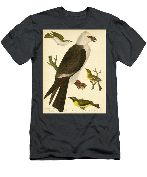 Mississippi Kite Men's T-Shirt (Athletic Fit)