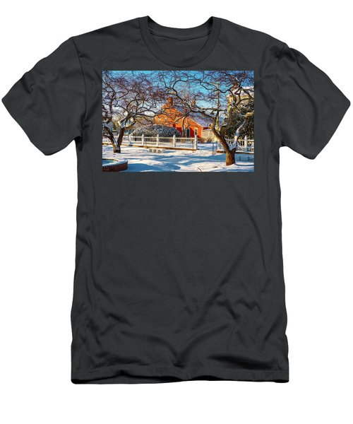 Morning Light, Winter Garden. Men's T-Shirt (Athletic Fit)