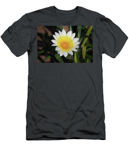 Morning's Glory Men's T-Shirt (Athletic Fit)