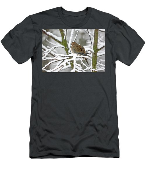 Mourning Dove In Snowstorm Men's T-Shirt (Athletic Fit)
