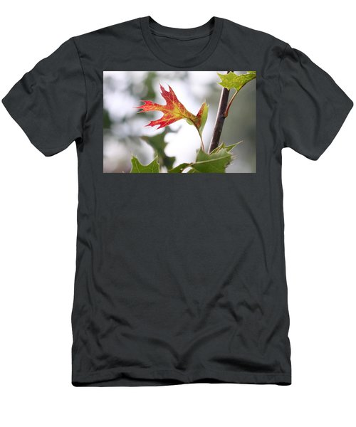 Oak Leaf Turning Men's T-Shirt (Athletic Fit)