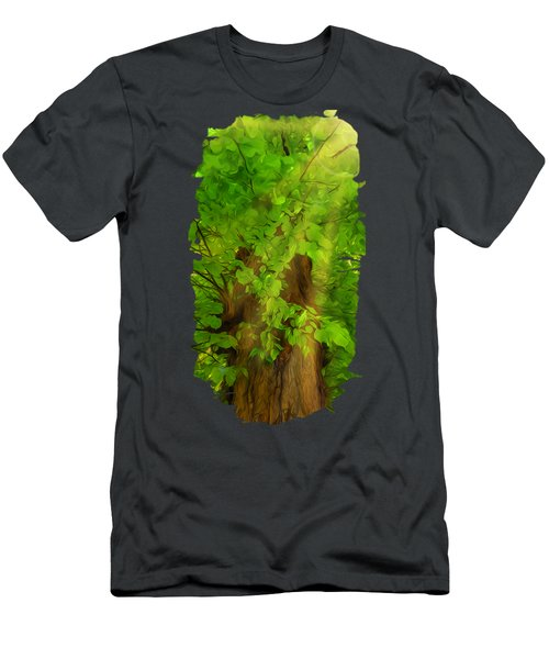 Old Tree Thick Branches Green And Sun Men's T-Shirt (Athletic Fit)