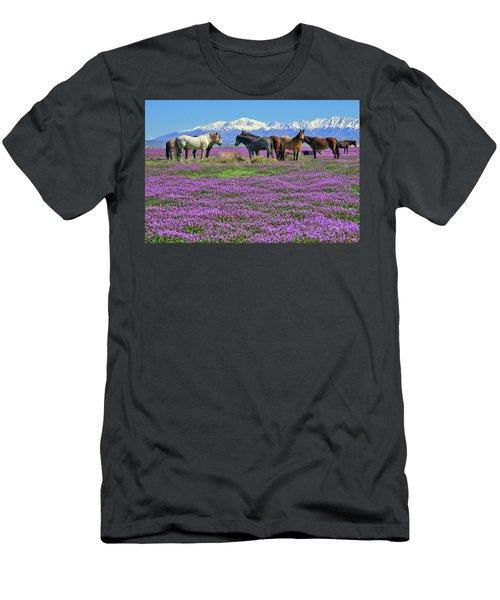 Onaqui Spring Men's T-Shirt (Athletic Fit)