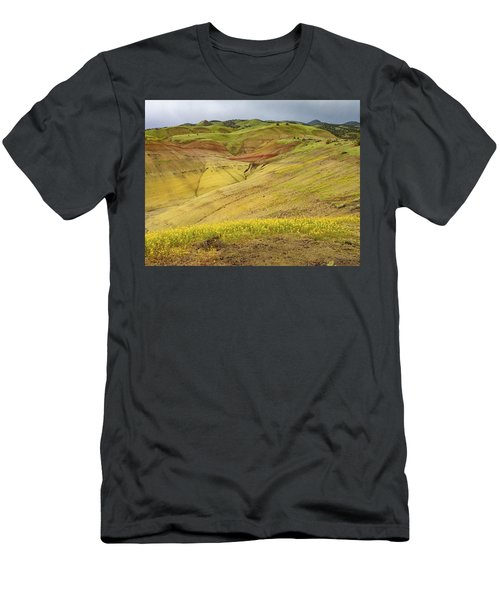 Painted Hills Scenic Men's T-Shirt (Athletic Fit)