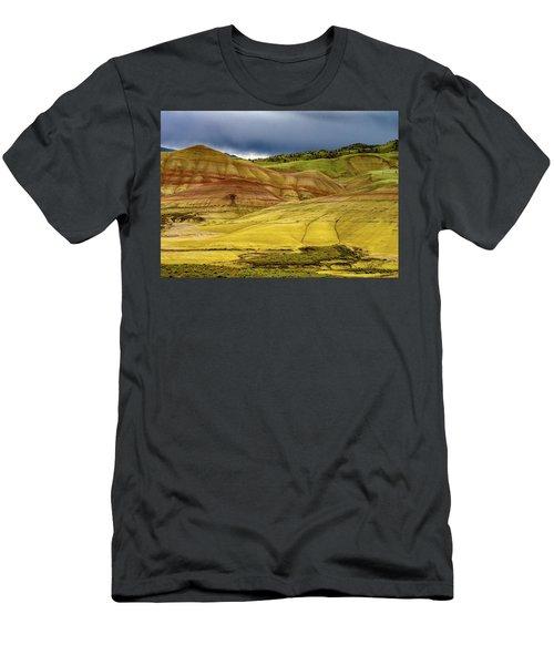 Painted Hills Vista Men's T-Shirt (Athletic Fit)