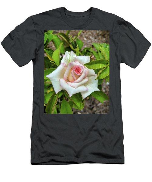 Pale Rose Men's T-Shirt (Athletic Fit)