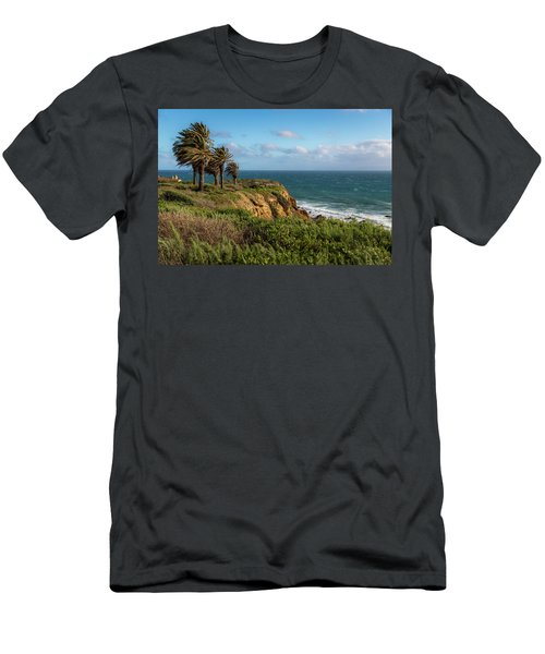 Palm Trees Blowing In The Wind Men's T-Shirt (Athletic Fit)