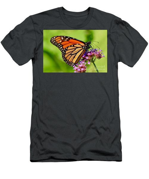 Perfect Monarch Men's T-Shirt (Athletic Fit)