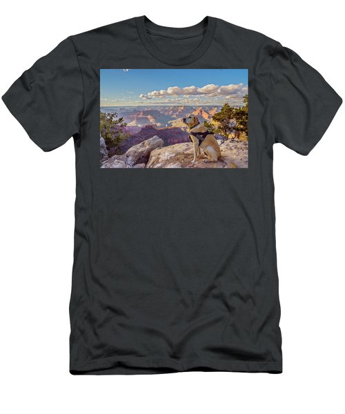 Men's T-Shirt (Athletic Fit) featuring the photograph Photo Dog Jackson At The Grand Canyon by Matthew Irvin