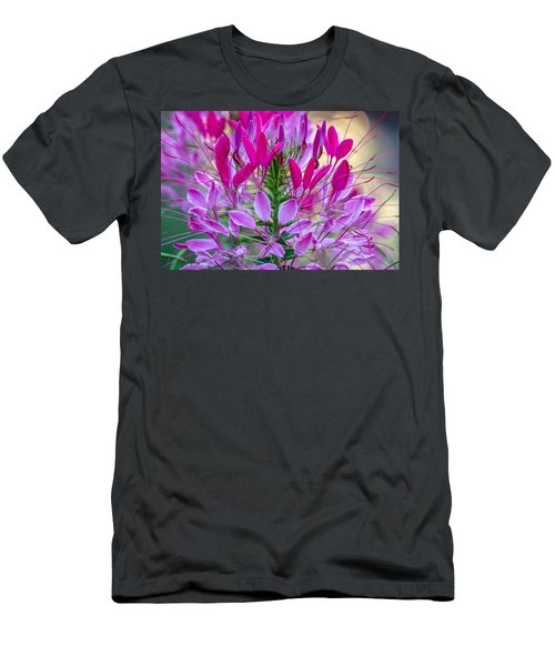 Pink Queen Flower Men's T-Shirt (Athletic Fit)