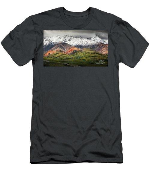 Polychrome Mountain, Denali Np, Alaska Men's T-Shirt (Athletic Fit)