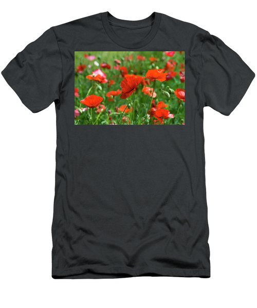 Poppies In The Field Men's T-Shirt (Athletic Fit)