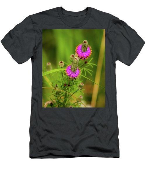 Prairie Clover Men's T-Shirt (Athletic Fit)