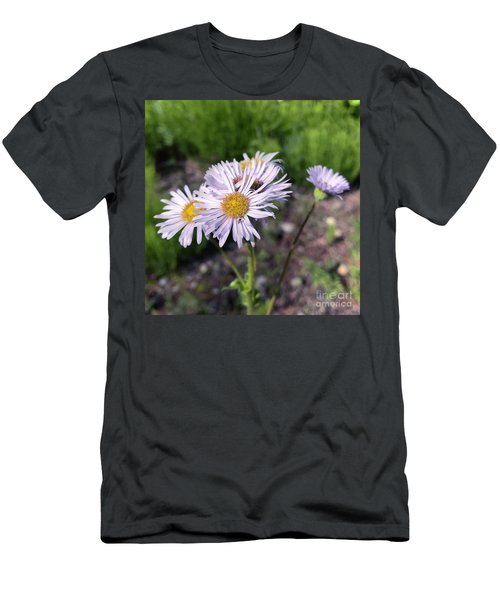 Purple Fleabane 5 Men's T-Shirt (Athletic Fit)