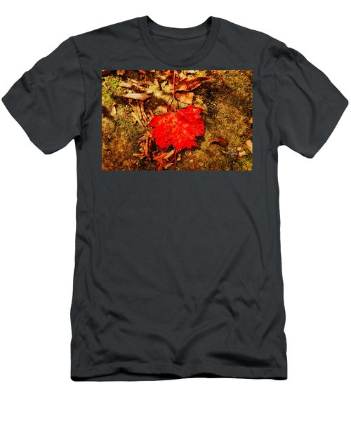 Red Leaf On Mossy Rock Men's T-Shirt (Athletic Fit)