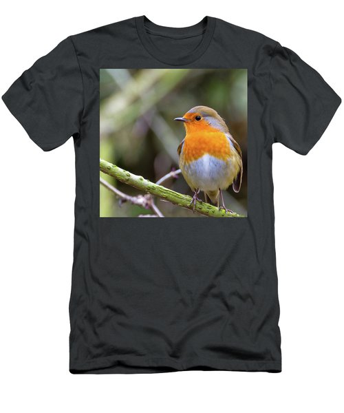 Robin. On Guard Men's T-Shirt (Athletic Fit)