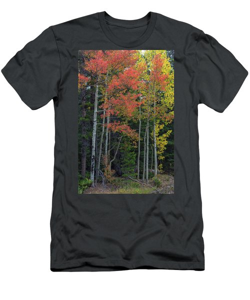 Men's T-Shirt (Athletic Fit) featuring the photograph Rocky Mountain Forest Reds by James BO Insogna