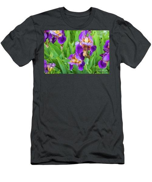 Royal Purple Irise Men's T-Shirt (Athletic Fit)