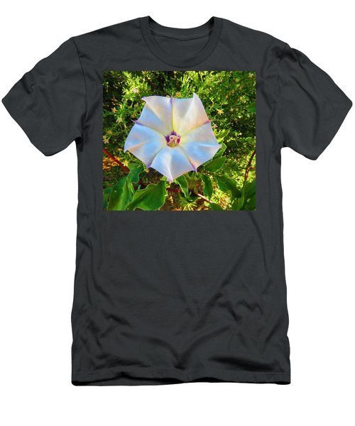 Men's T-Shirt (Athletic Fit) featuring the photograph Sacred Datura In The Golden Hour by Judy Kennedy