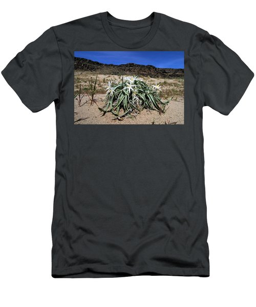 Star Lilys Its Springtime In The Rockys Men's T-Shirt (Athletic Fit)