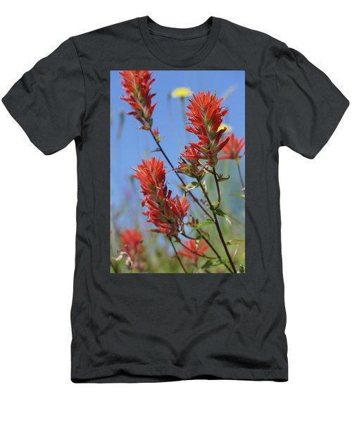 Scarlet Indian Paintbrush At Mount St. Helens National Volcanic  Men's T-Shirt (Athletic Fit)