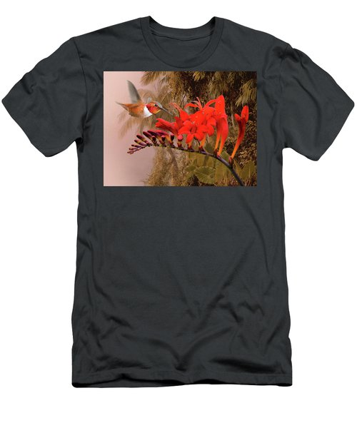 Scarlet Sage And Hummingbird Men's T-Shirt (Athletic Fit)