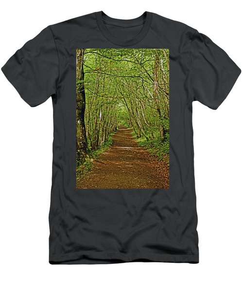 Scotland. Killiecrankie. Path Through The Trees. Men's T-Shirt (Athletic Fit)