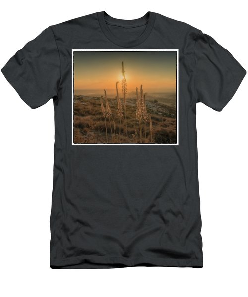 Sea Squills At Sunset Men's T-Shirt (Athletic Fit)