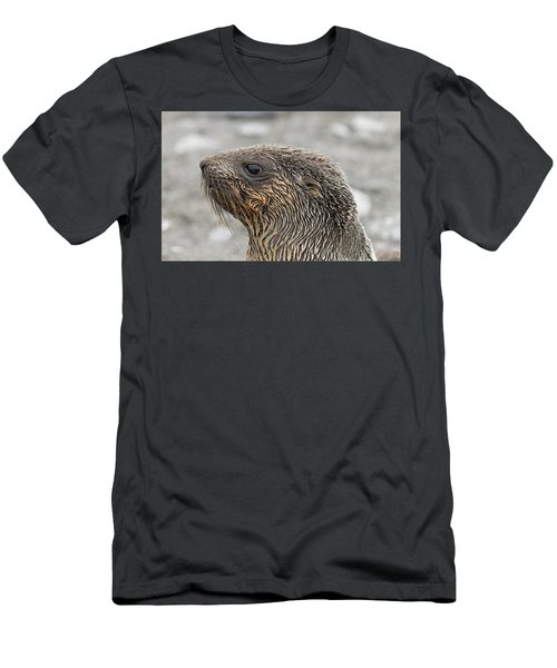 Seal Of Approval Men's T-Shirt (Athletic Fit)