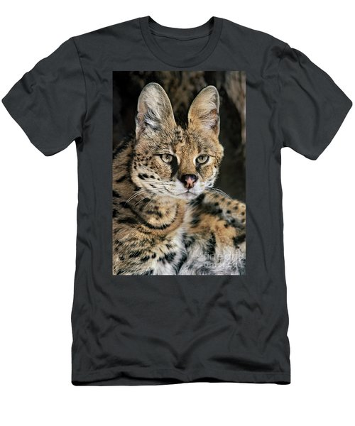 Serval Portrait Wildlife Rescue Men's T-Shirt (Athletic Fit)