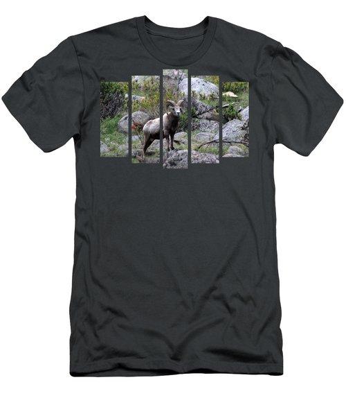 Set 49 Men's T-Shirt (Athletic Fit)